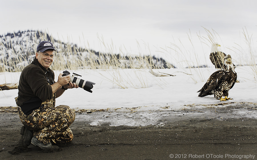 bald-eagle-and-photographer-Alaska-robert-otoole-photography