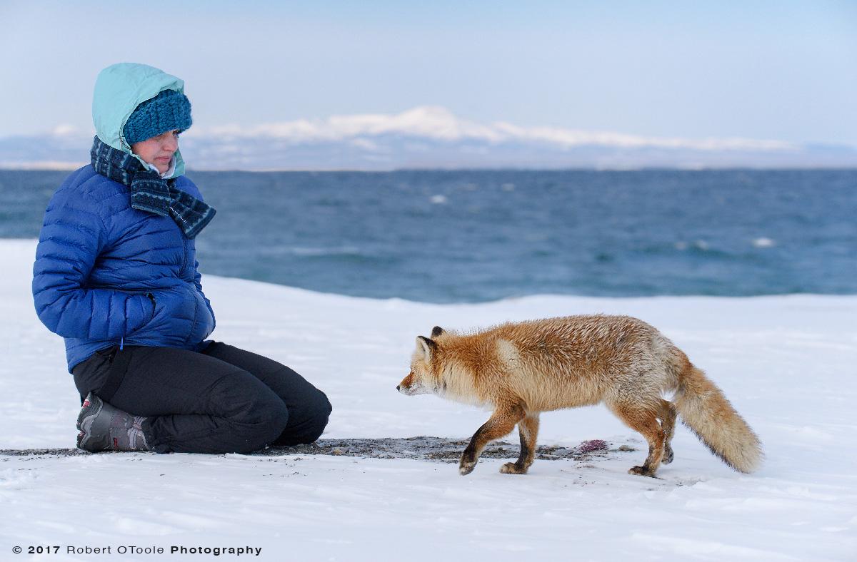 Tatyana-and-fox-Hokkaido-Japan-2017-Robert-OToole-Photography