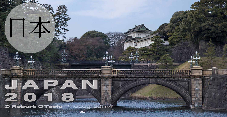 Japan-Eye-glass-bridge-Tokyo-2018-Robert-OToole-Photography.jpg