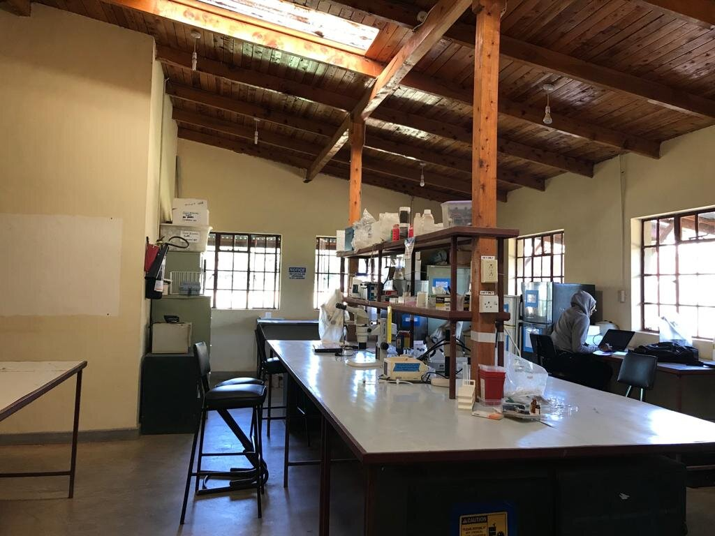 The interior of one of Mpala's multiple labs.
