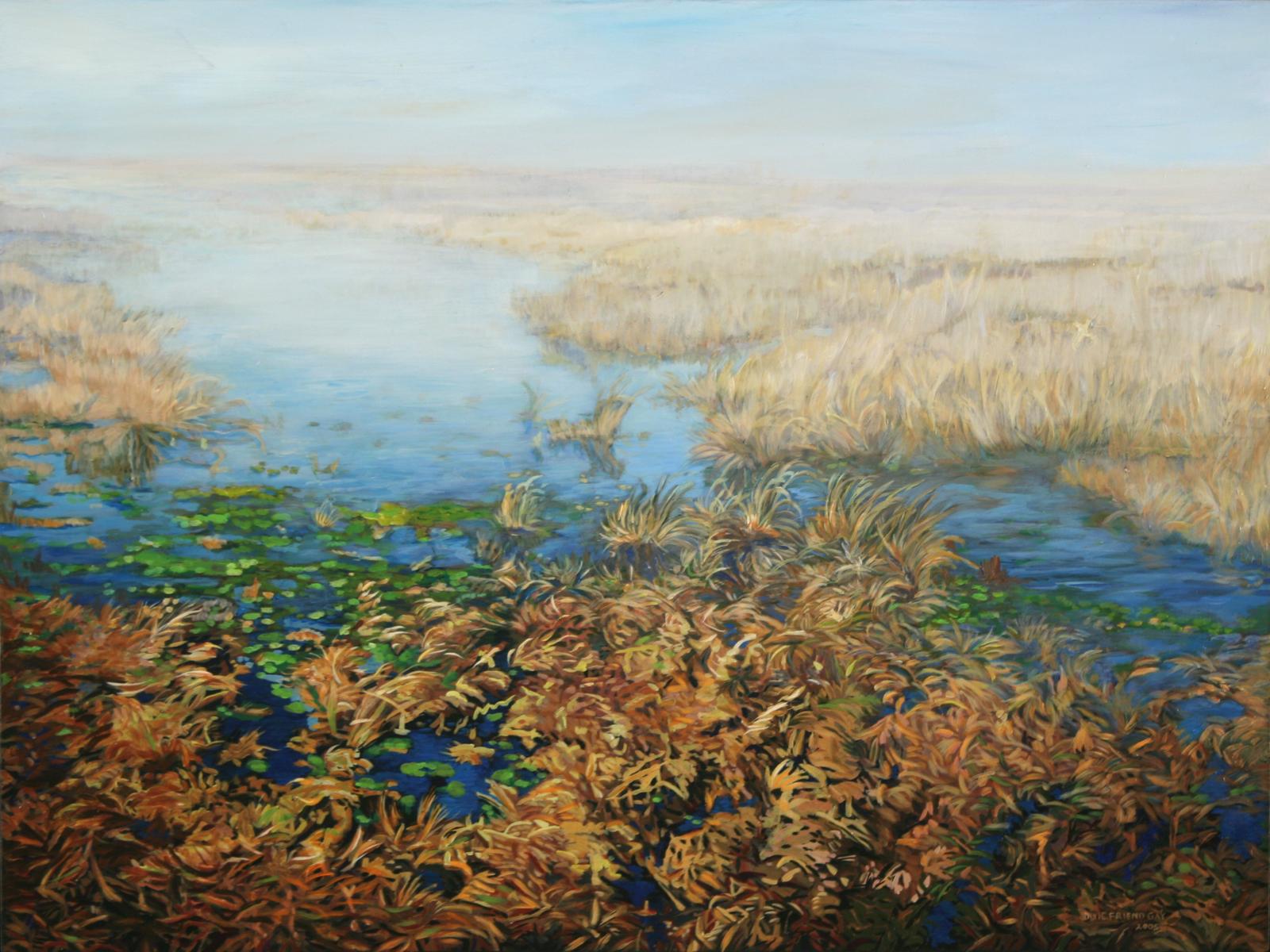 Texas Wetlands, 2005