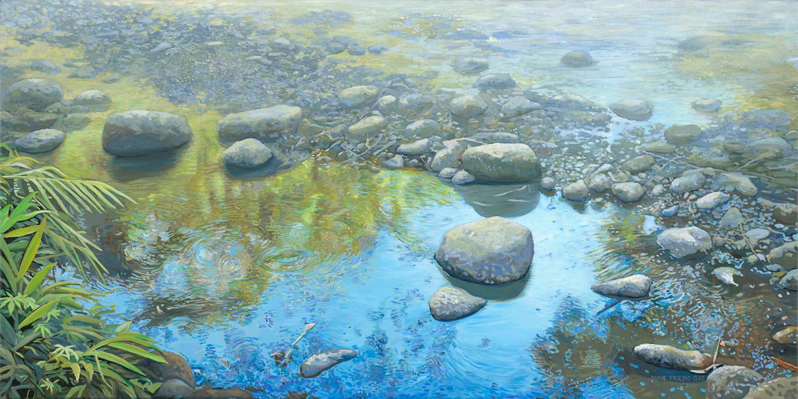 Ciervo River, 2010