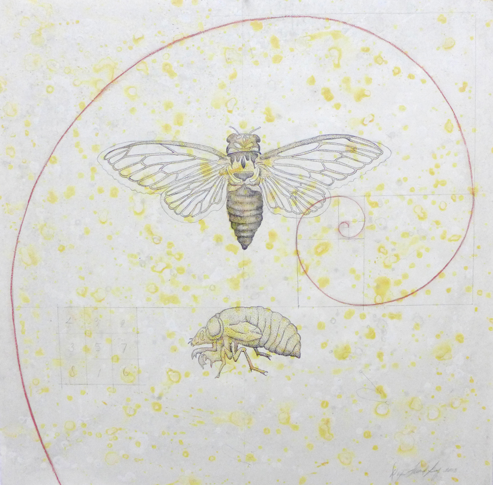 Cicada, 2003