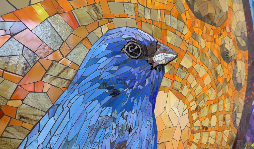 SAN ANTONIO SONGBIRDS