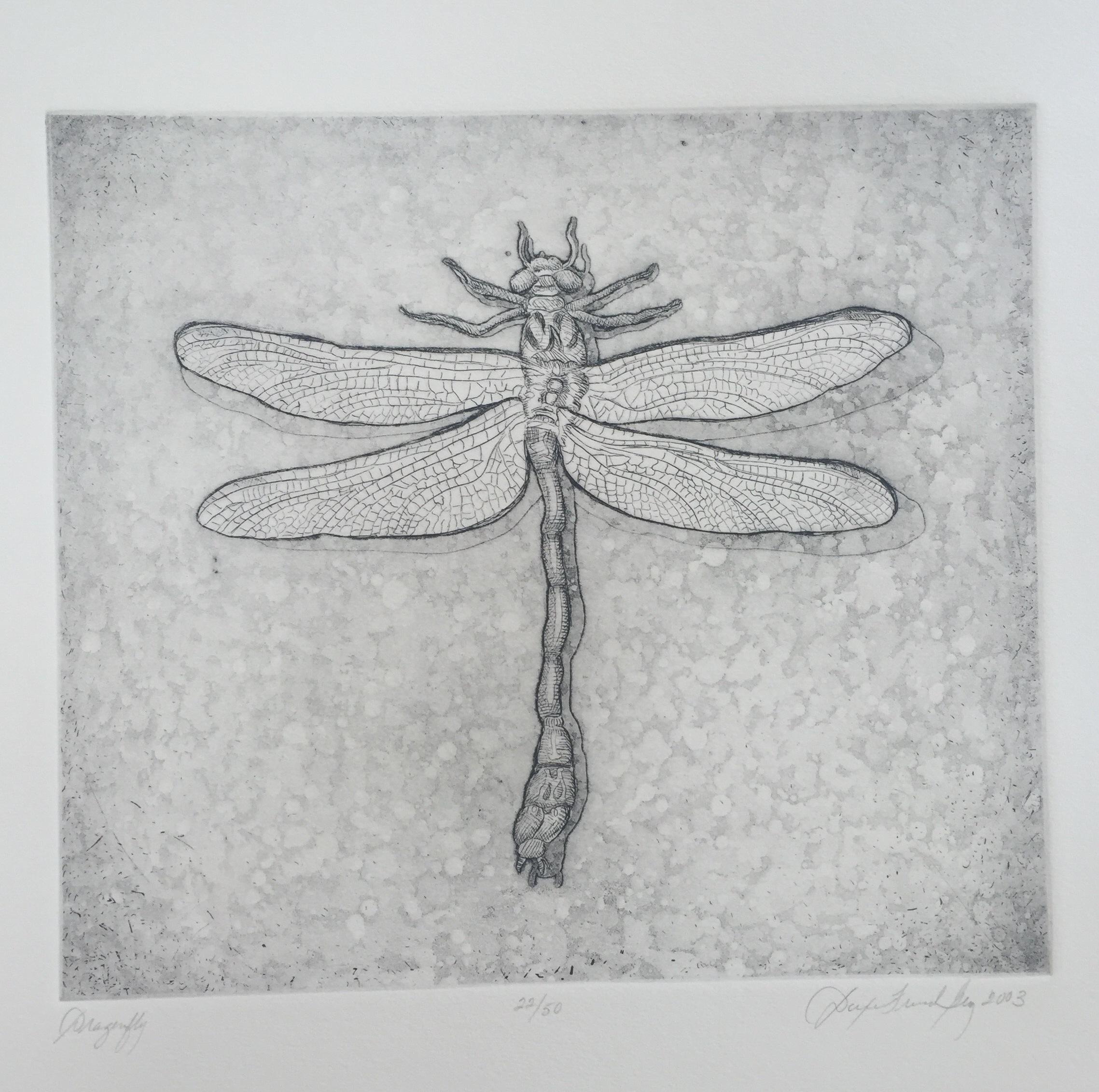 Dragonfly, 2003