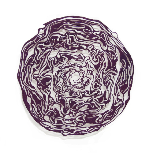 Red Cabbage 2016 by Meredith Woolnough
