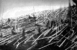 Fallen trees at Tunguska, 1927, via  Wikimedia Commons