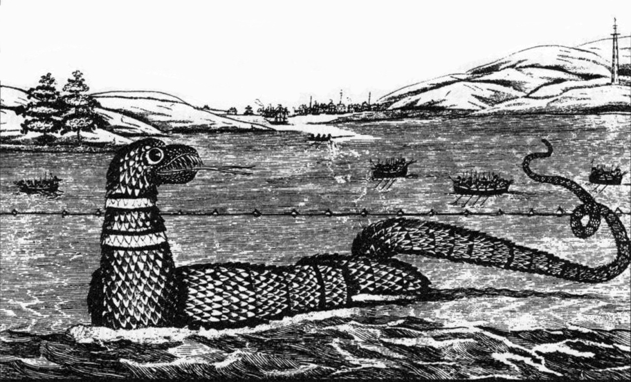 A depiction of the Gloucester sea serpent, via  Wikimedia Commons