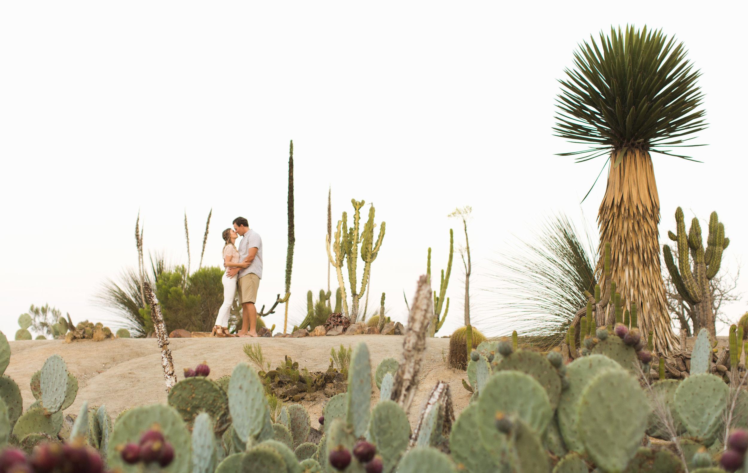 1000.Shewanders.photography.balboa.engagement-1359.jpg