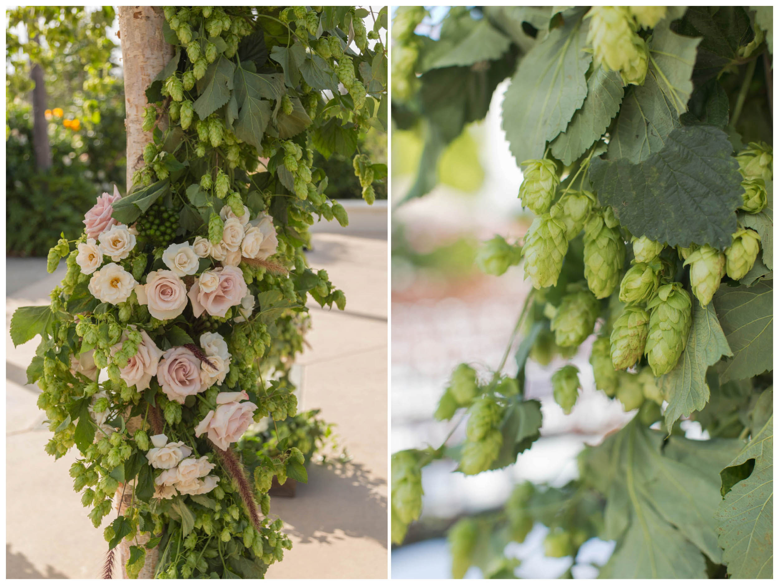 shewanders.wedding.photography.san.diego.rustic._1695.jpg