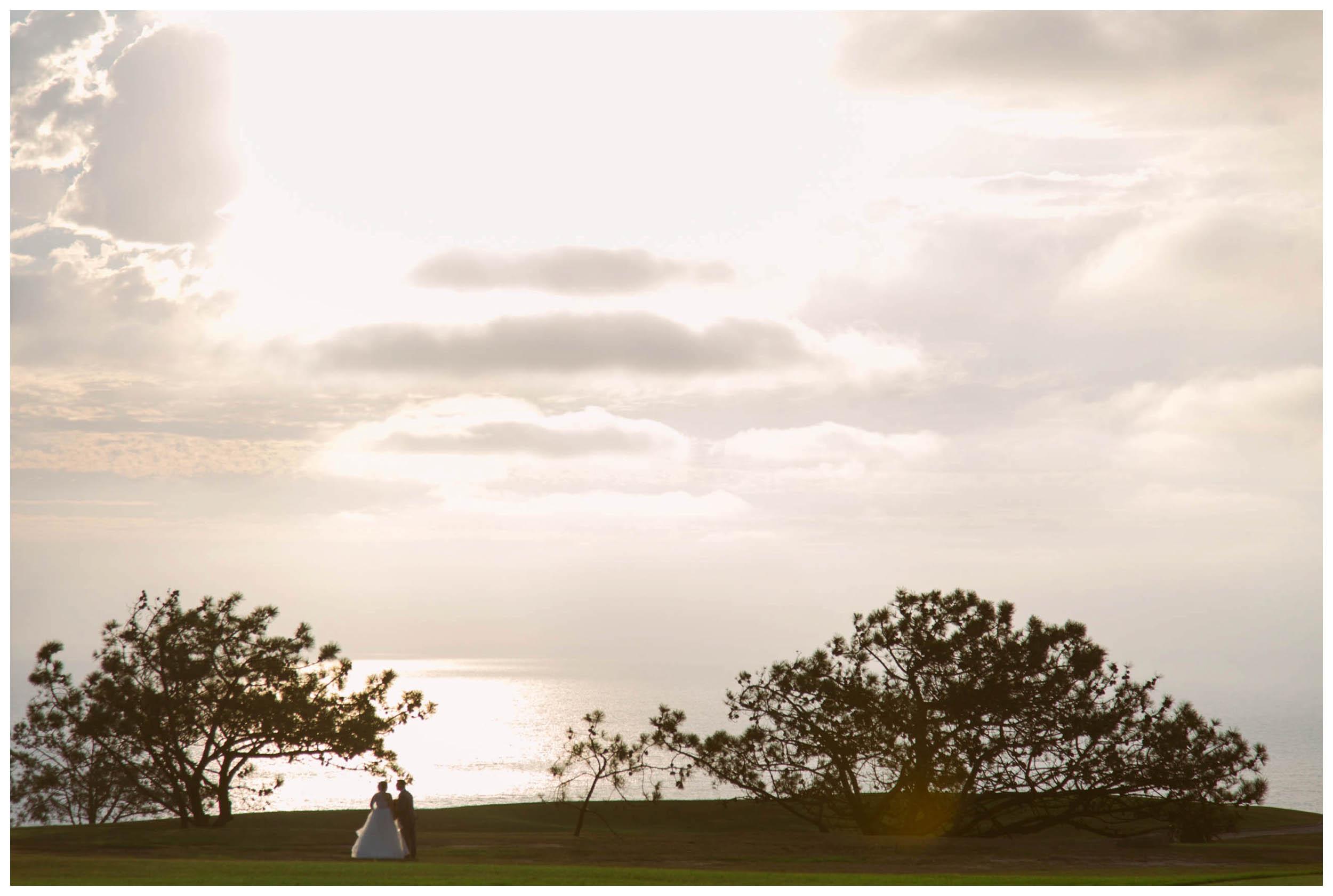 la.jolla.wedding.photography.shewanders-1066.jpg