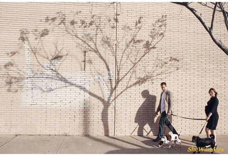 shadowtree1.jpg