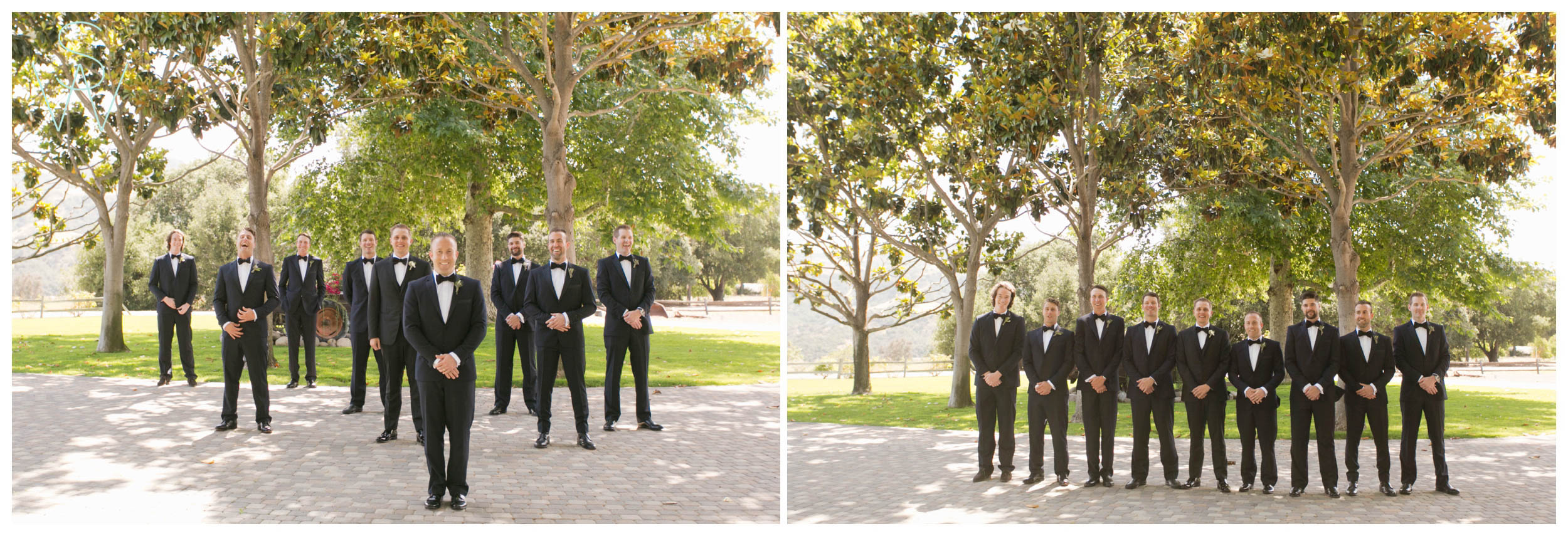 Shewanders.san_.diego_.wedding.photography.private.estate.tara_.jason-3797.jpg.diego_.wedding.photography.private.estate.tara_.jason-379.jpg