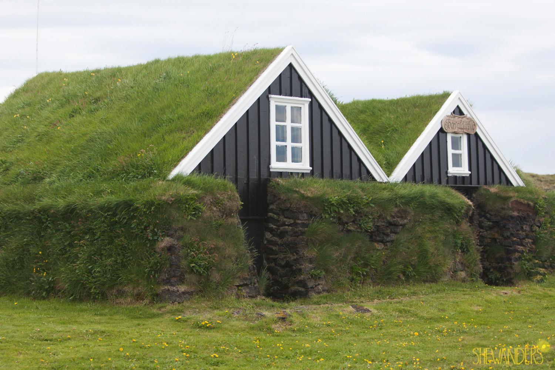Shewanders.Suzanne.Iceland_1013.jpg.Iceland_1013.jpg