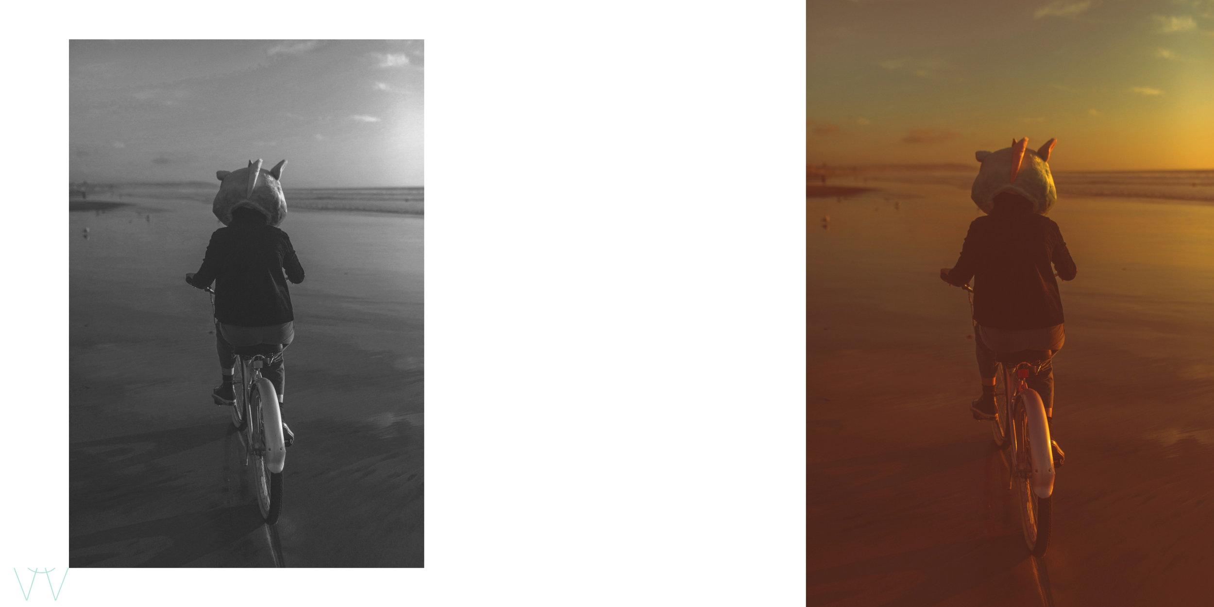 shewanders.photography.1080.jpg