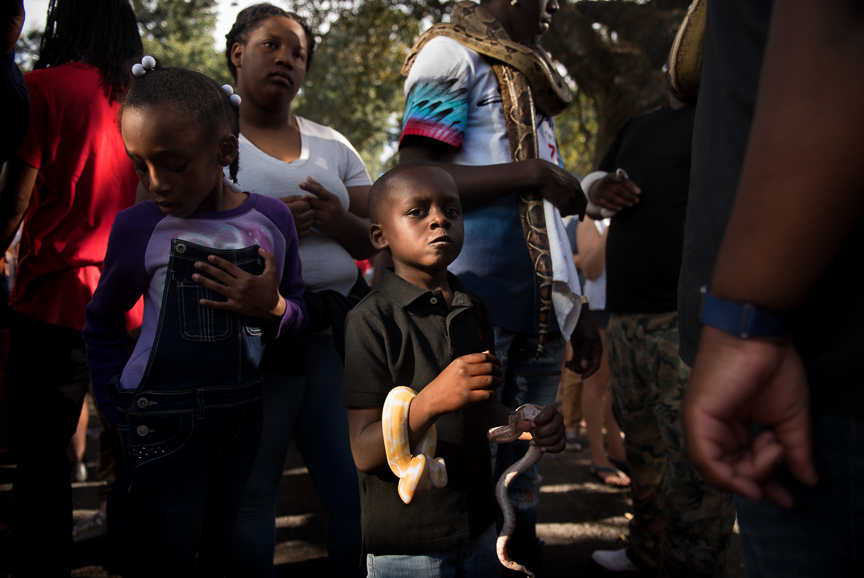 A young boy holds a snake during a second line parade in New Orleans.