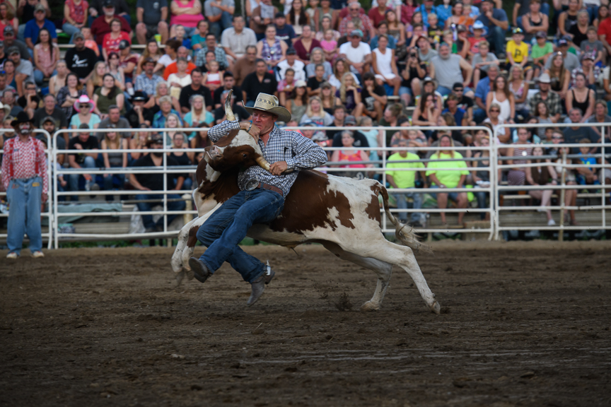 A cowboy battles a steer in the steer wrestling competition at the Fort Armstrong Championship Rodeo on Friday, July 13, 2018 at the Crooked Creek Horse Park in Ford City, Pa.