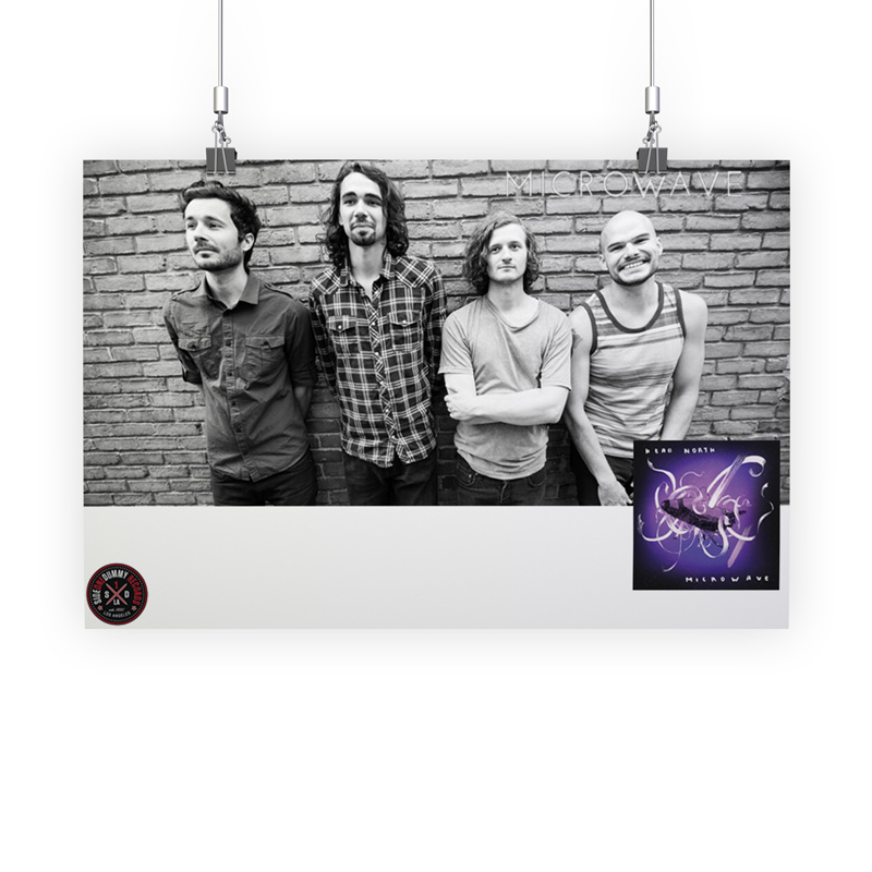 Microwave Poster