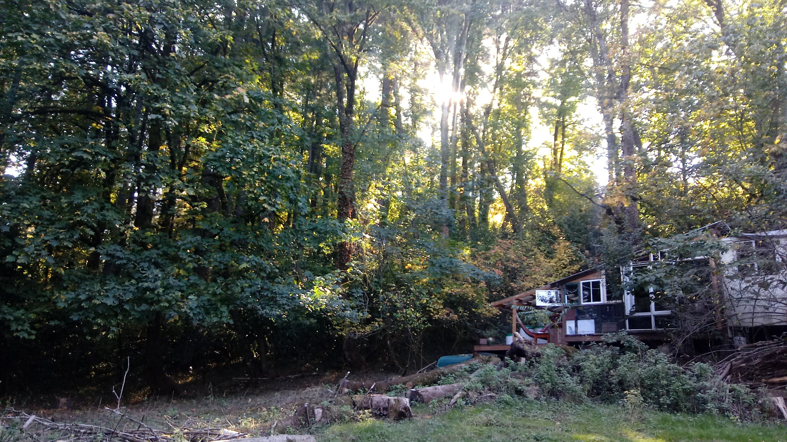 rain's house at the south end, autumn 2018