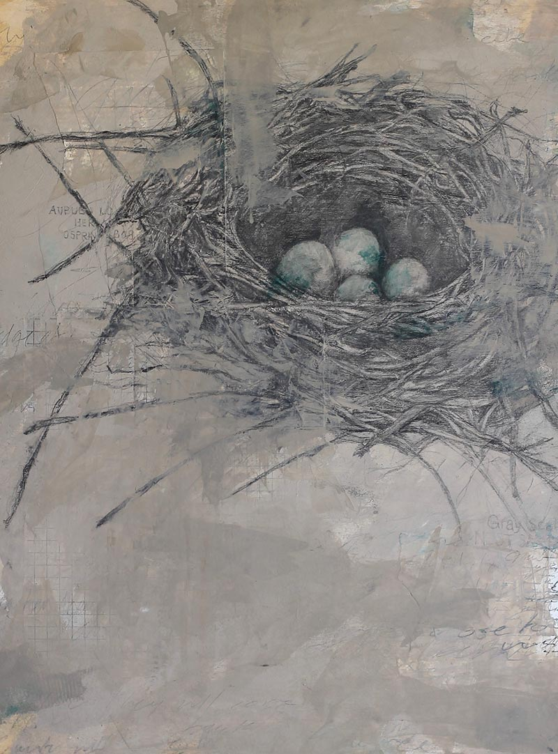 Nest Study, 2014