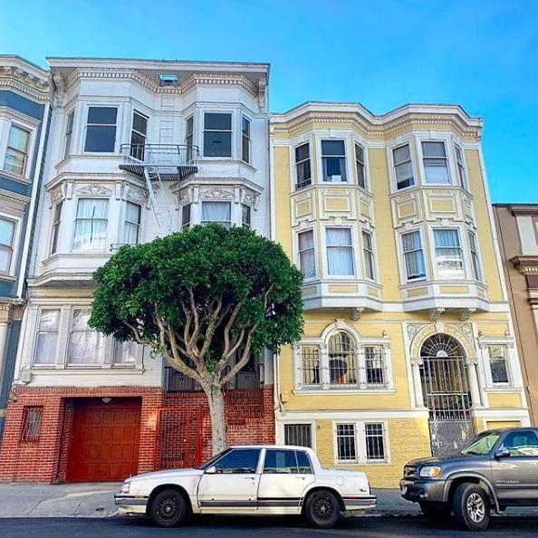 Warm days in San Francisco. ☀️ (pc:@msbettymagnolia)