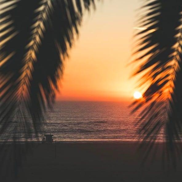 Stunning views of the California coast. 🌴 (pc:@benricardphotography)