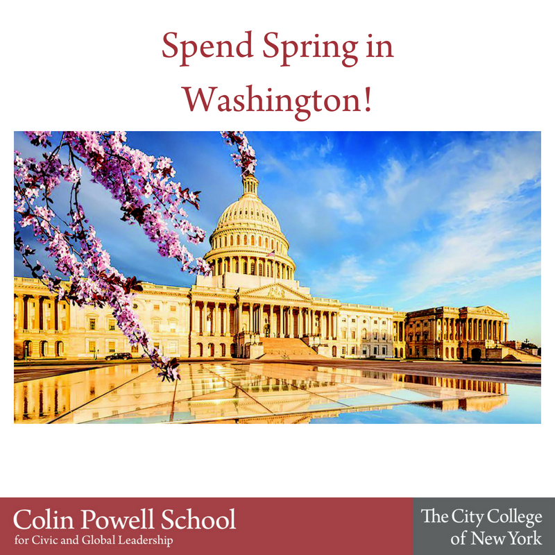Spend Spring in Washington.png