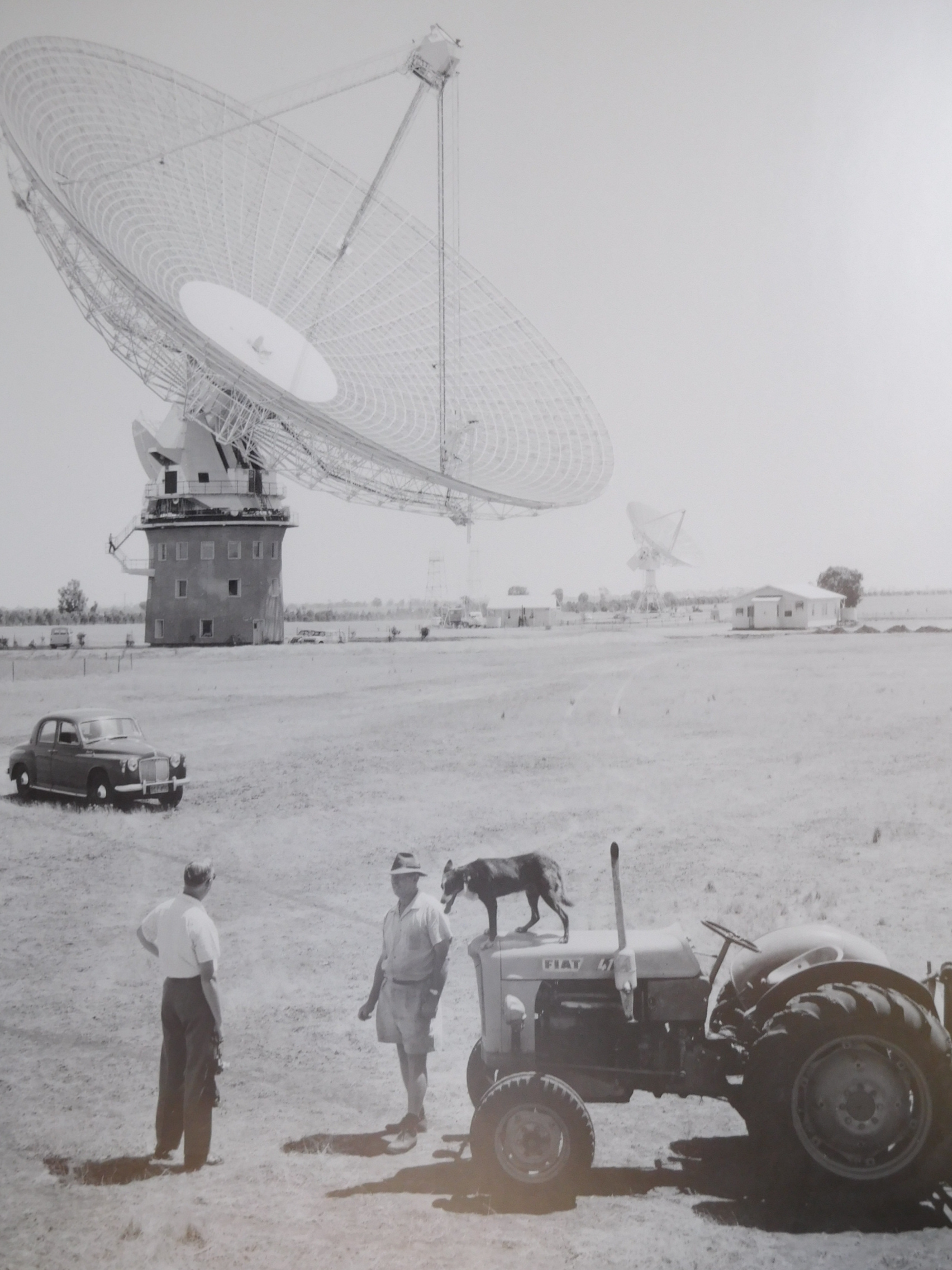 I love this photo, especially the old car in the foreground and the kelpie sitting up on the tractor.