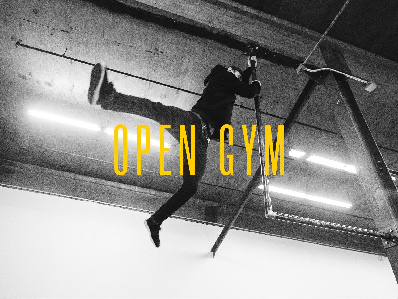 opengym-100.jpg