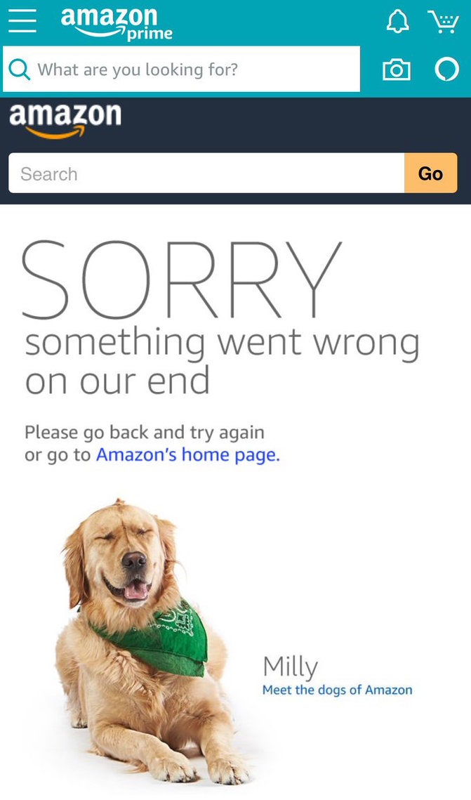 Milly says Sorry-something-went-wrong-on-amazon-prime-day-fail-joanne-klee-marketing-2018
