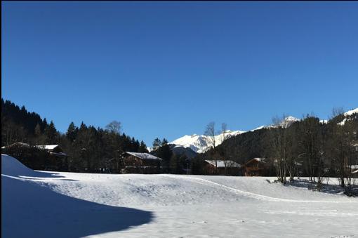 Ausblick Süd-West Winter.png