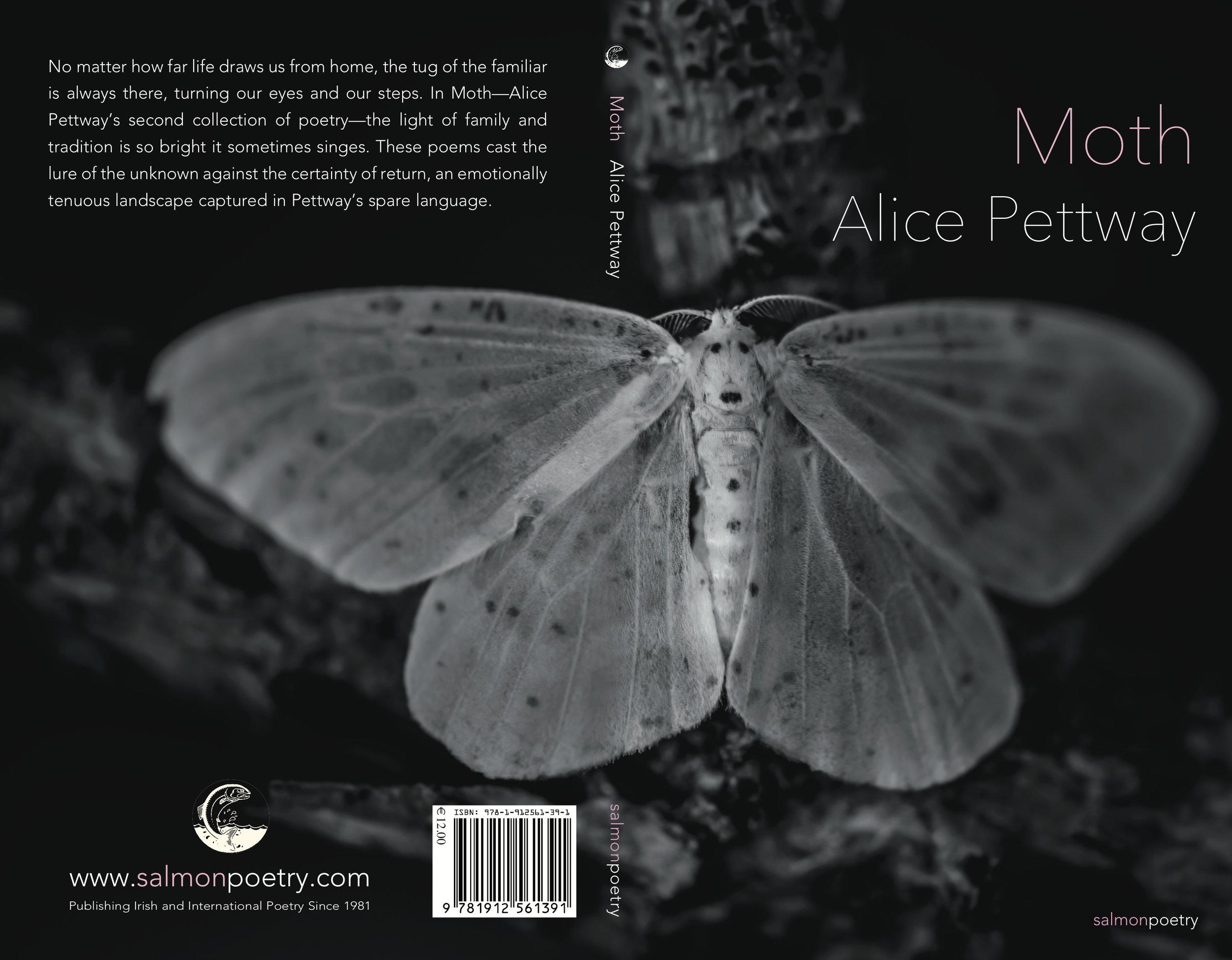 Moth - Alice Pettway.jpg