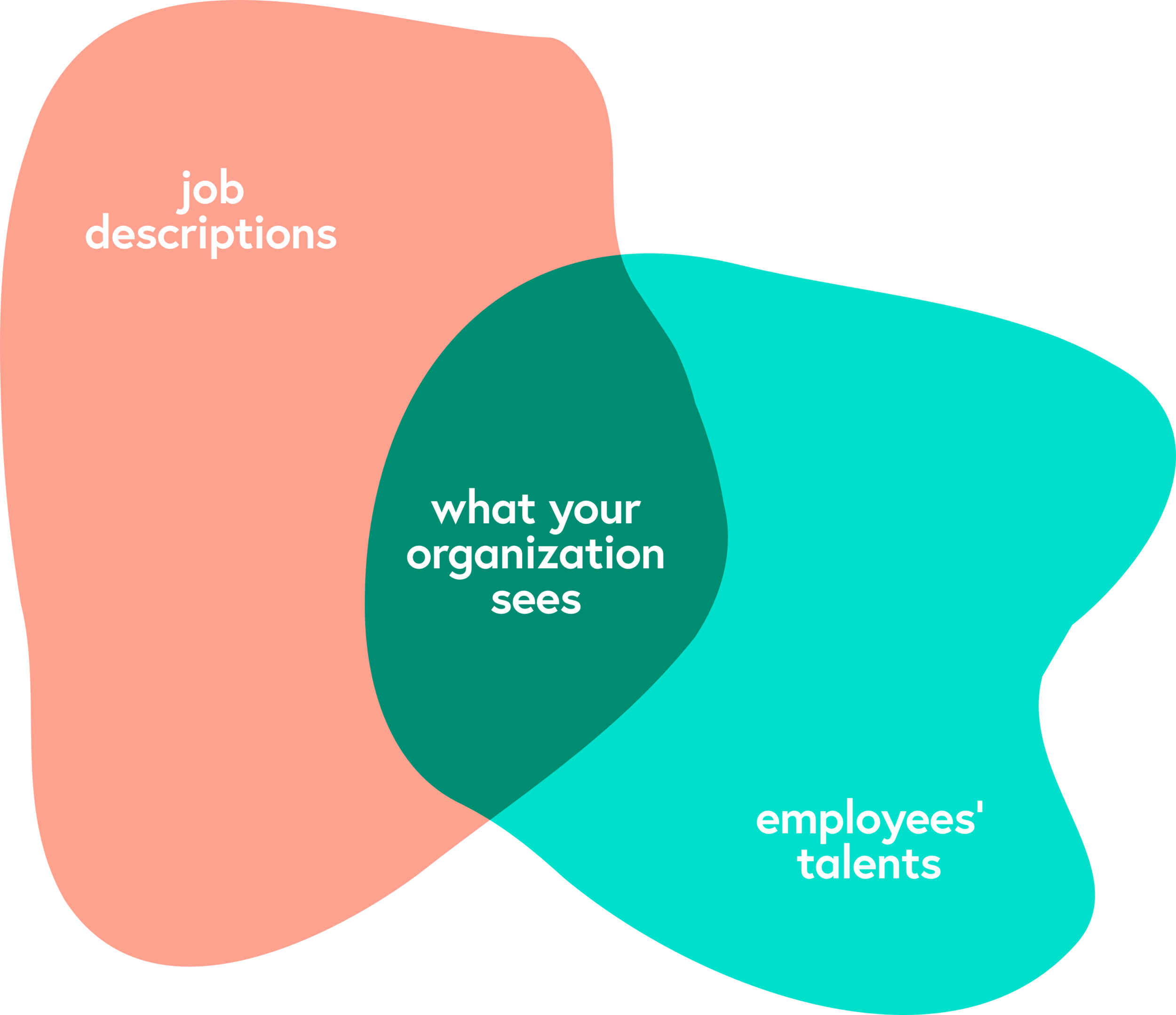 A Venn Diagram: Job descriptions vs. Employees' talents - the overlap is what your organization sees.