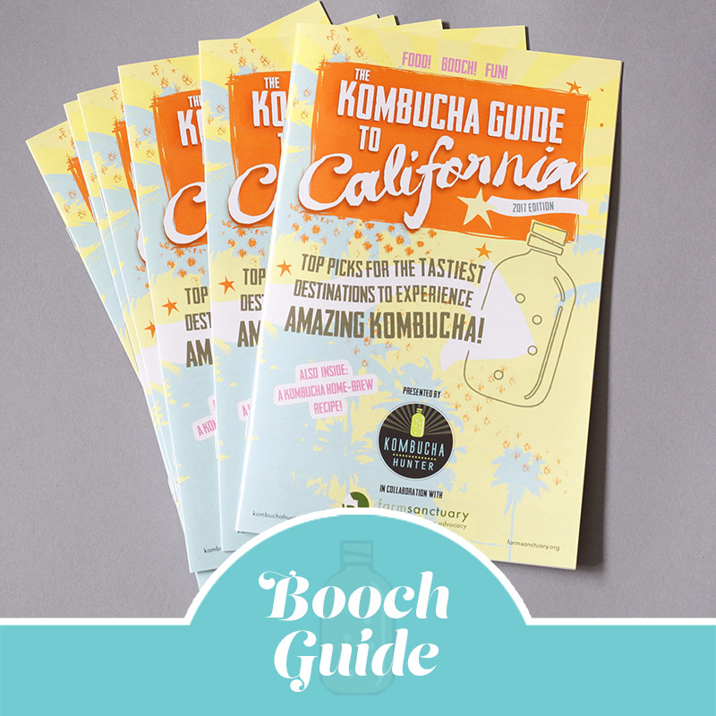 Kombucha Guide To California