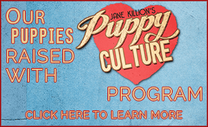 OurPuppies-areraisedwith.png