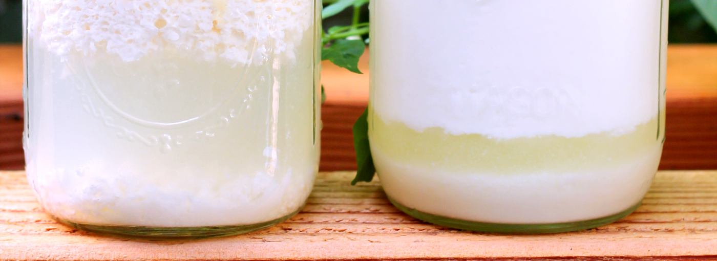 or collect whey from making your own kefir.
