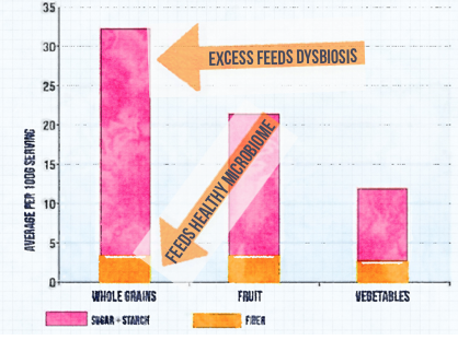 As you can see, grains have about as much fiber as veggies, but with up to 5x the starch! Too much of this type of food acts more like dysbiosis snacks than anything else, especially if you're not properly digesting.