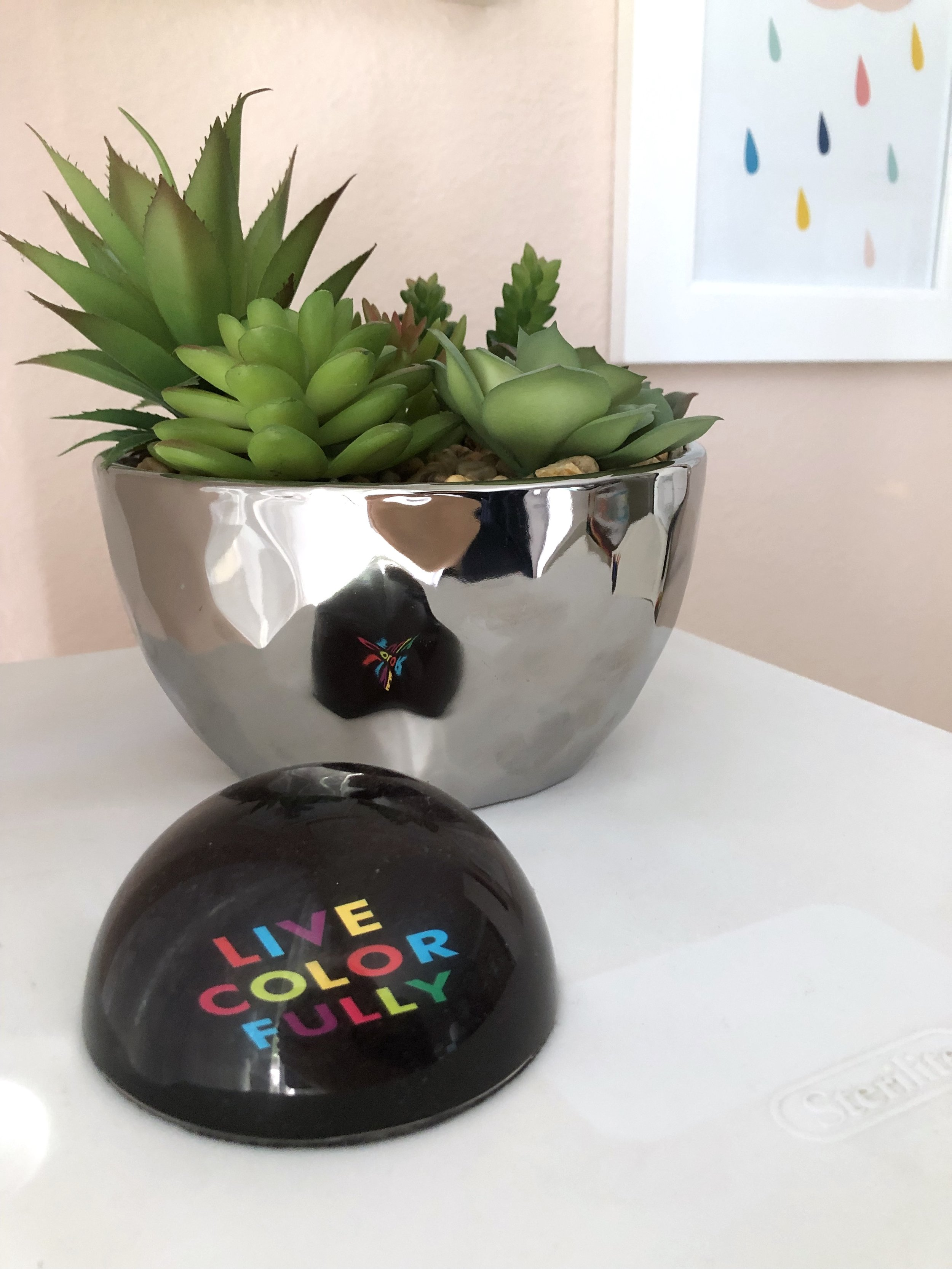 The Kate spade paper weight was a gift from my mom when i was in design school, and this succulent planter adds a nice does of greenery
