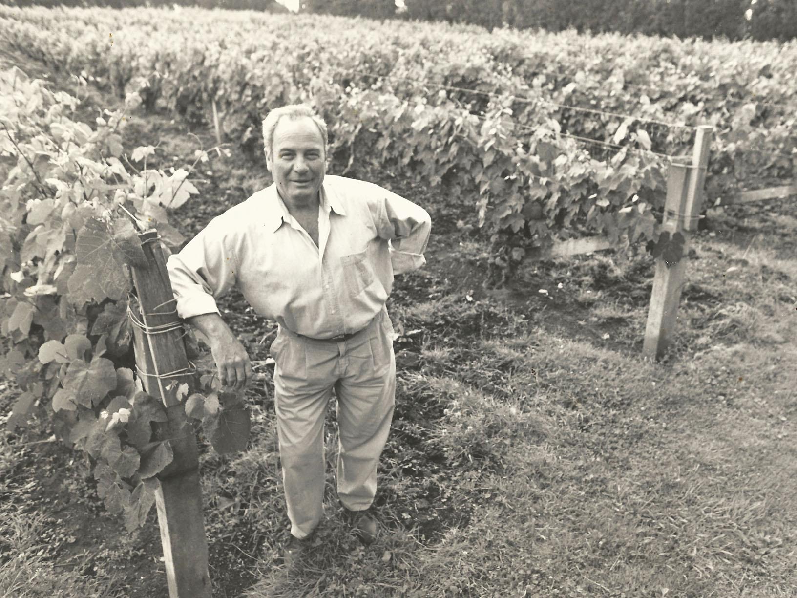 Rado Hladilo winemaker and viticulturist