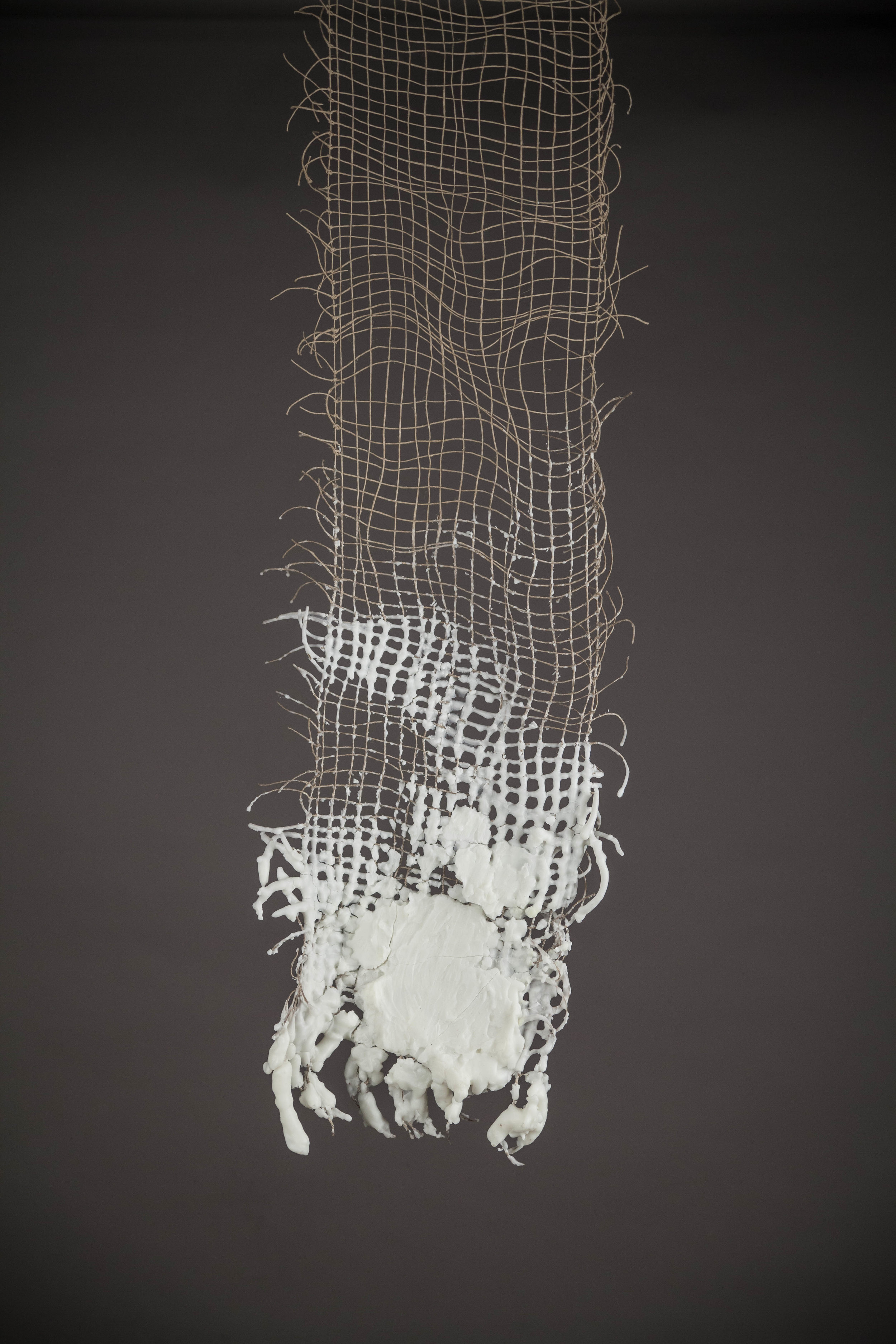 Encrusted Net from Gilead