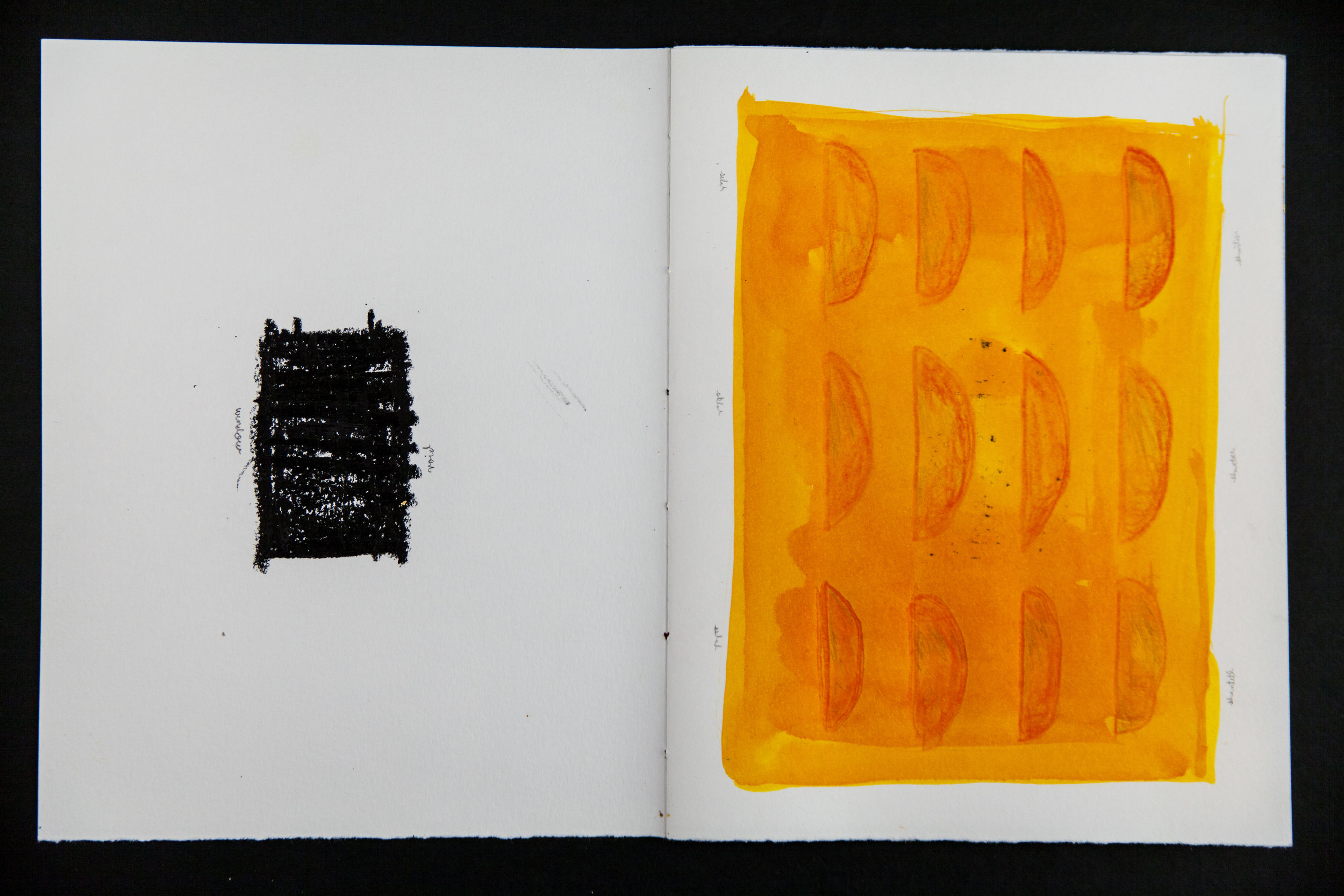 Codex3_ (2 of 9).jpg