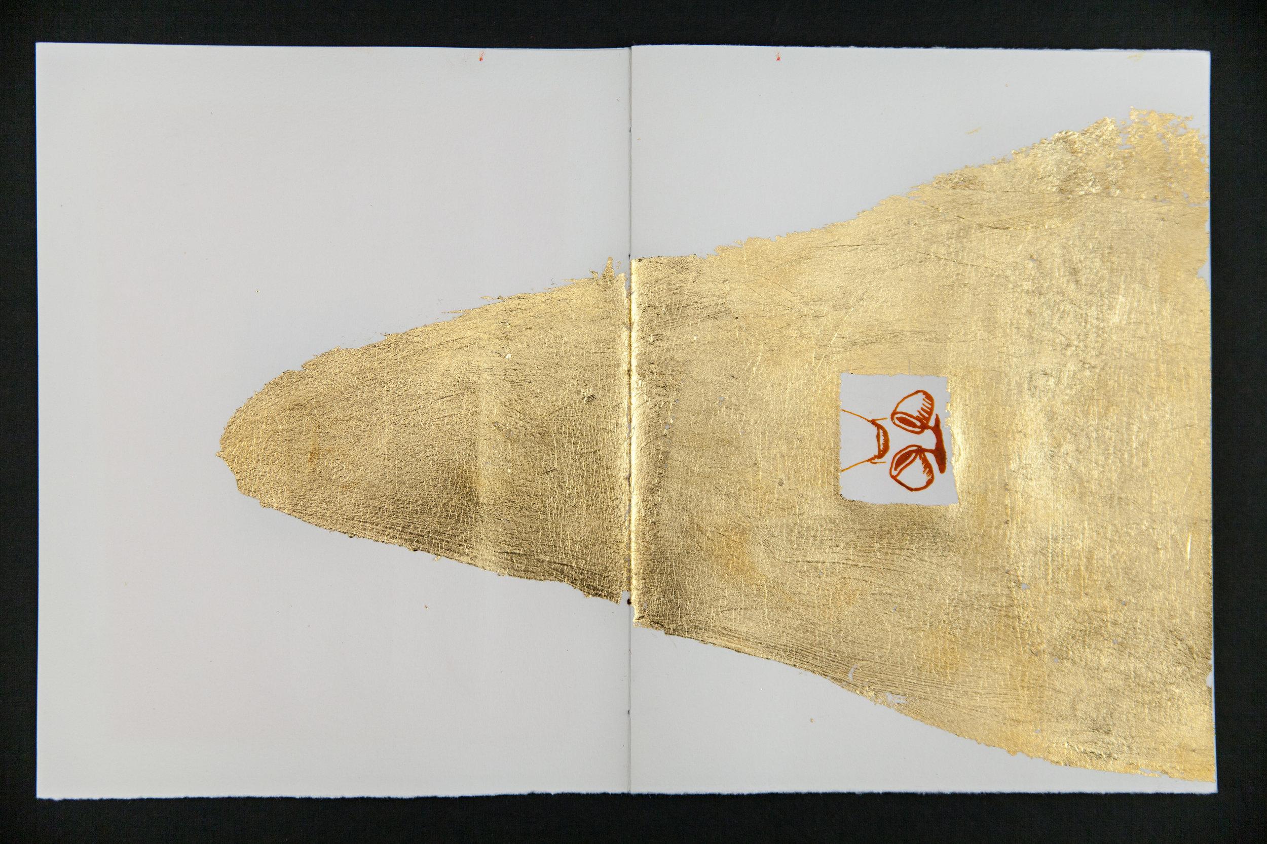 Codex3_ (3 of 9).jpg