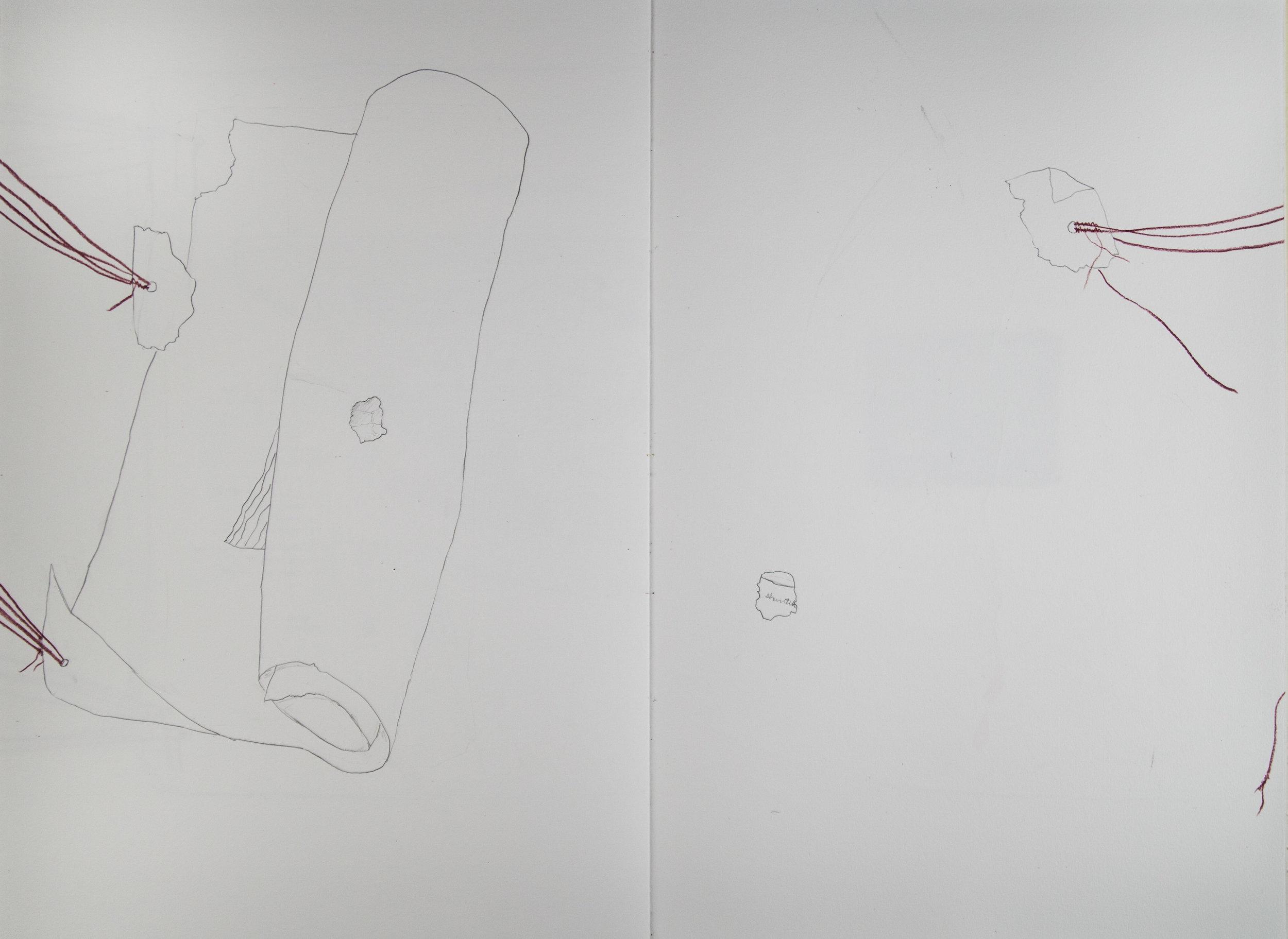 Codex6_ (7 of 11).jpg