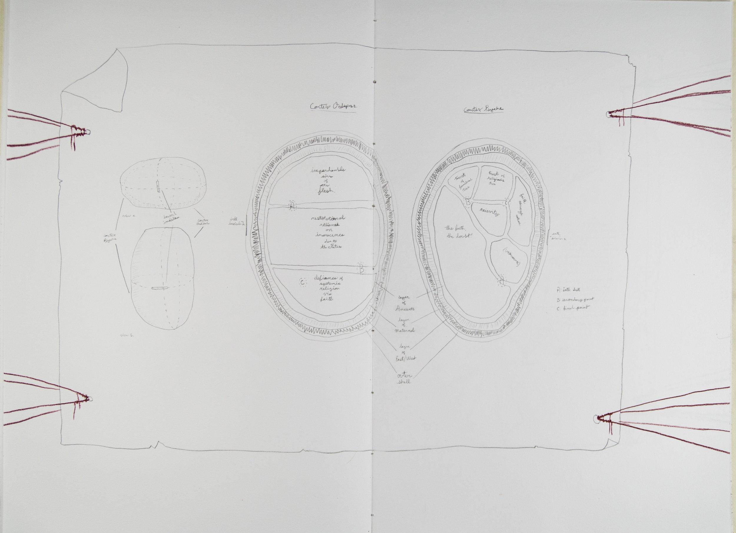 Codex6_ (5 of 11).jpg