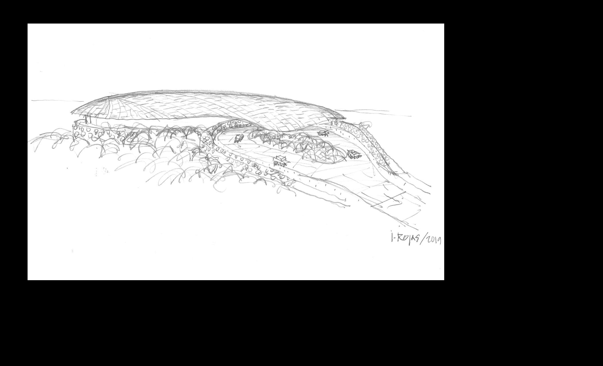 sketch sirenis.png