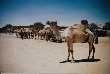 Somalia Part 5 c.jpg