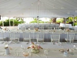 "90""x156"" Table Linen   Full drop on 8ft banquet tables."