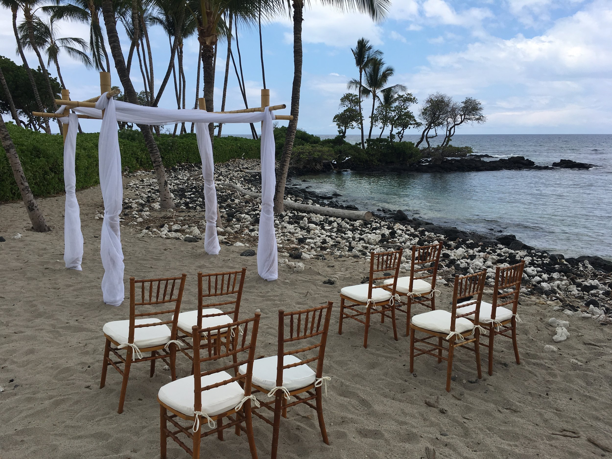 Natural Chiavari Chiars with a simple Fabric Draping over a Bamboo Wedding Structure on the beach.