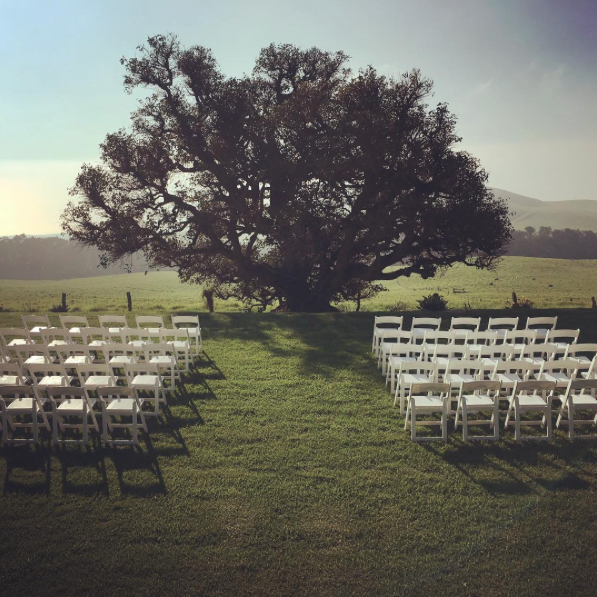 White Padded Resin folding chairs for ceremony at  Kahua Ranch .  Coordinated  Swept Away Events