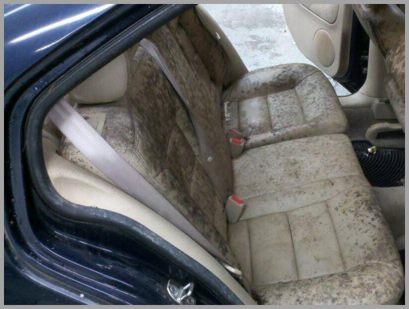 mold in car 1 MOD.jpg